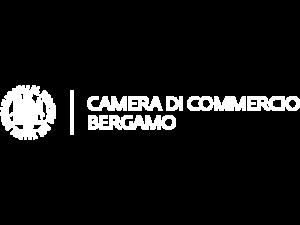 Immagine-Camera-di-Commercio-Bergamo