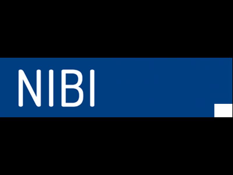 Logo-NIBI-Nuovi-Mercati-Formazione-D'impresa