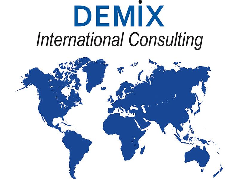 Icona-Demix-International-Consulting