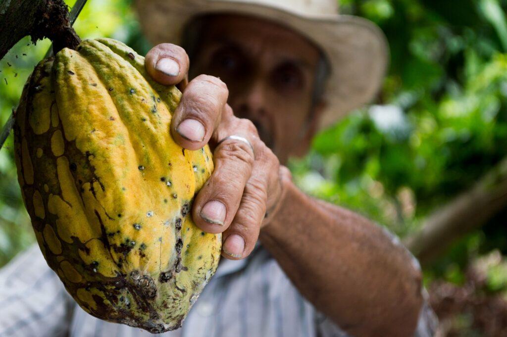 Foto-di-un-uomo-con-un-frutto-ECOMO