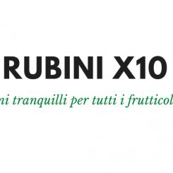 Rubini-X10-1-768x564